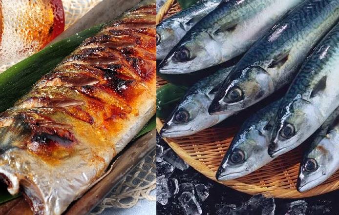 鯖魚的DHA含量特別多,在所有魚類中僅次於吞拿魚,能預防血液凝固。資料圖片及網圖