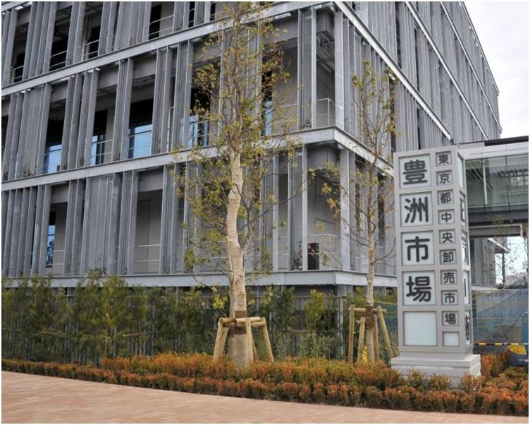 丰洲市场位于东京江东区,将于10月11日开幕正式运作。  资料图片
