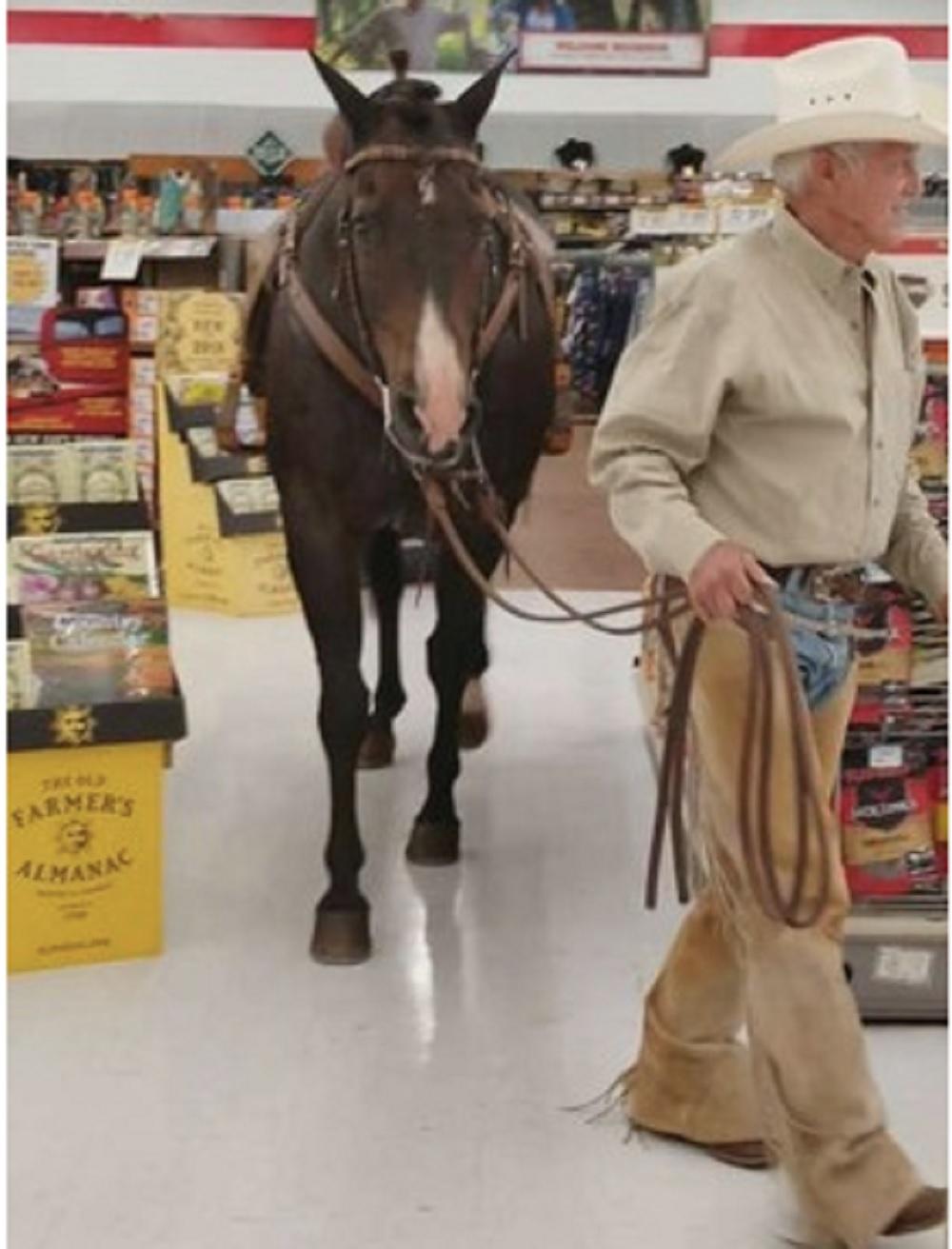 「牛仔大叔」拖著愛駒在冷氣開放的商舖逛一圈。(網圖)