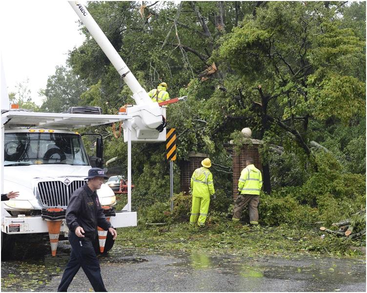 吹袭期间不少大树被吹倒。