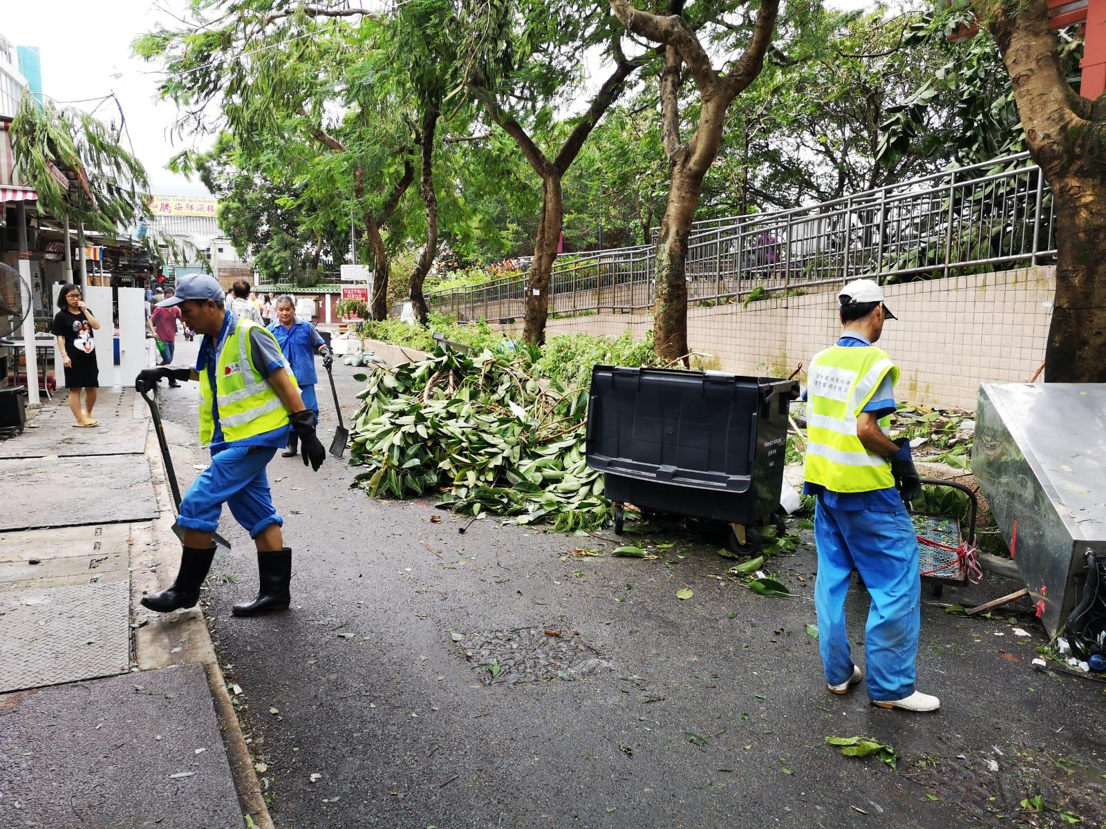 食環署動員8000人清理塌樹。