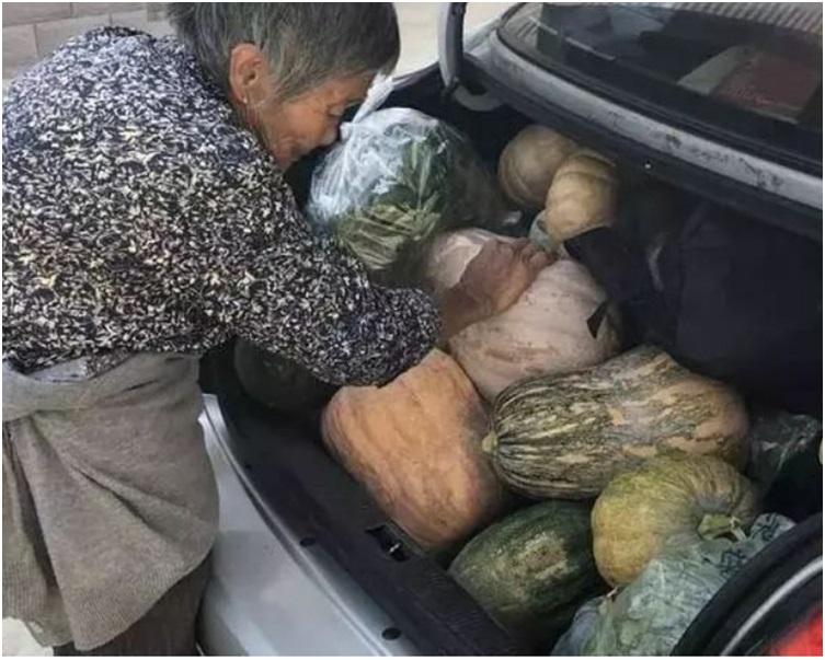 婆婆不停將自家種的瓜菜塞入車尾箱好讓兒孫回家享用。網圖