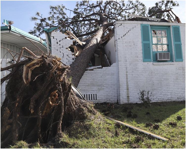 巴拿马城和墨西哥滩受灾情况最为严重。