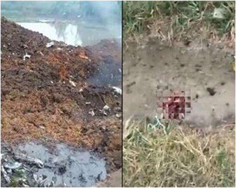 一塊殘骸旁帶血漬疑似屍塊的物體。網圖