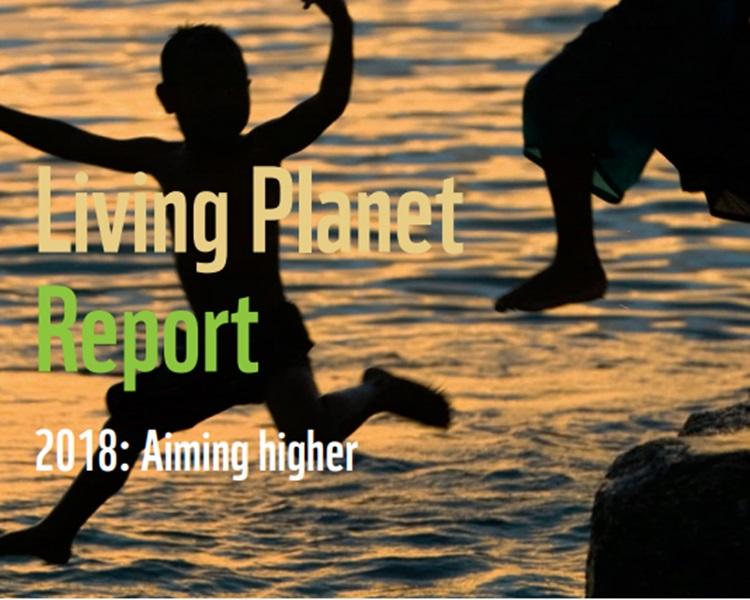 WWF发表《Living Planet》报告,指出44年间全球野生物种锐减6成。WWF官网