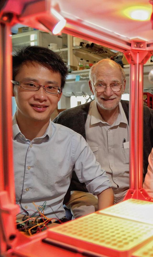 研究由浙江大學醫學院神經生物系研究員郭方,與其導師羅斯巴什發現。