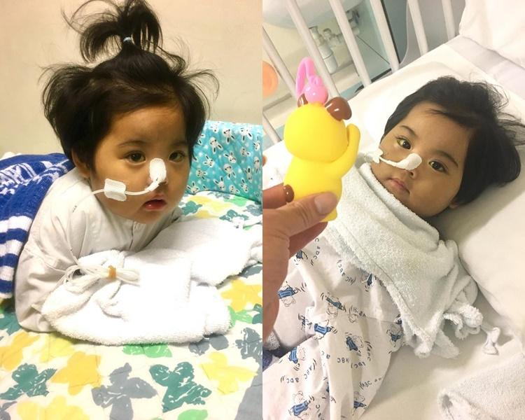 小予恩獲有心人捐肝。 小予恩關懷禱告組圖片