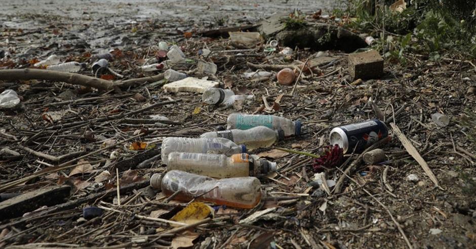 「single-use」(一次性使用)這生字近年經常與「飲管」、「膠樽」一同使用,顯示環保議題備受關注。AP