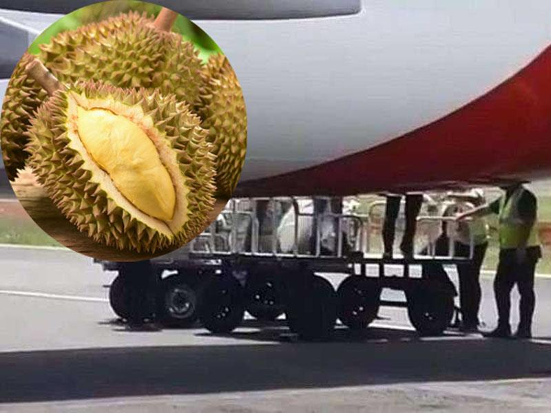 印尼一架國內航班上因載有超過2噸的榴蓮,氣味傳到客艙讓乘客難以忍受,從而發生糾紛。(網圖)