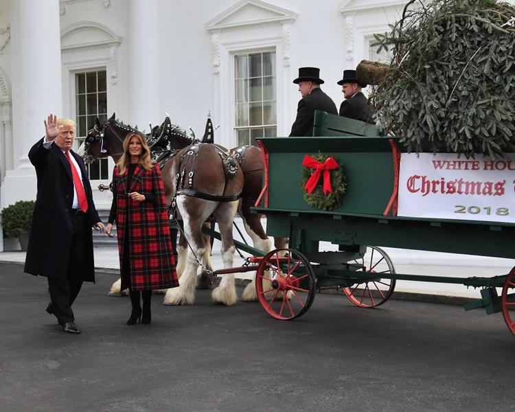 特朗普亲迎白宫圣诞节兼拍马屁。