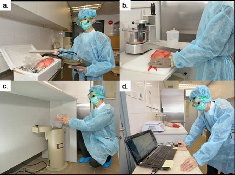 中心人員利用手提裝置檢測輻射水平。並準備樣本利用污染監測系統檢測樣本中核素含量。政府圖片