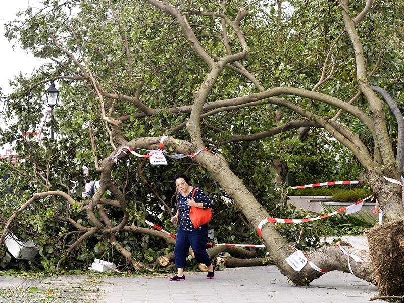「山竹」襲港造成廣泛破壞。資料圖片