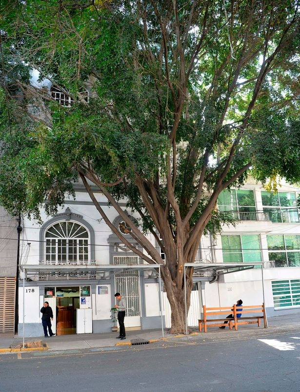 Hospital de Cos(网图)