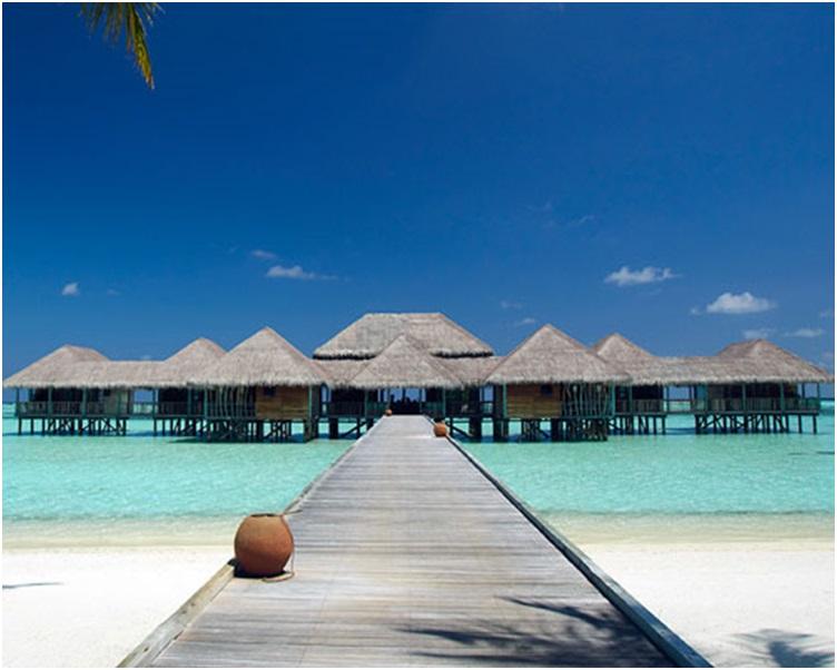 曾获评为全球五大最佳酒店之一的马尔代夫吉利兰堪富士度假村。网图