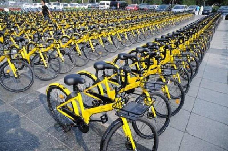據報ofo單車解散海外事業部。網上圖片