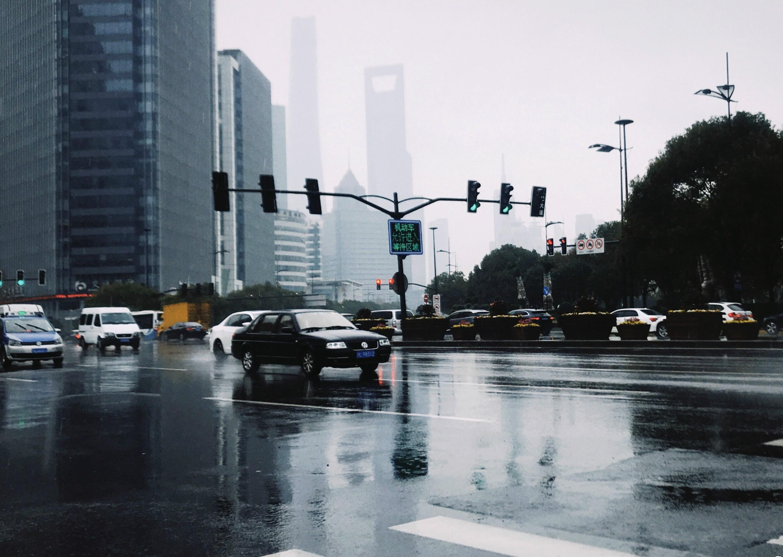 上海已經多日下雨。網上圖片