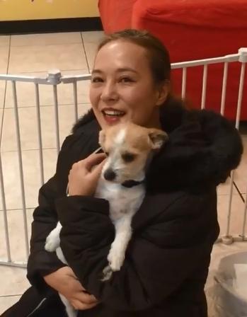 翁靜晶旅行遇狗狗拍門求救,決定領養。fb圖片
