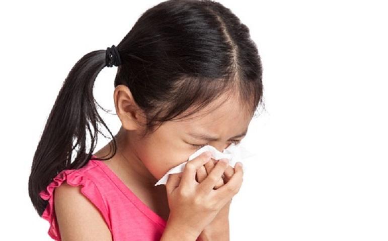 衞生署推介5款中藥食療抗流感。