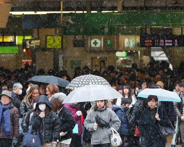 東京降下入冬以來初雪,比往年平均晚了9天。網圖