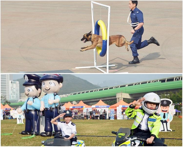 入場的市民最難忘警犬表演。