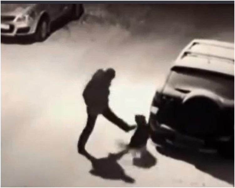 男子無端突起飛腳向狗狗踢去。網圖