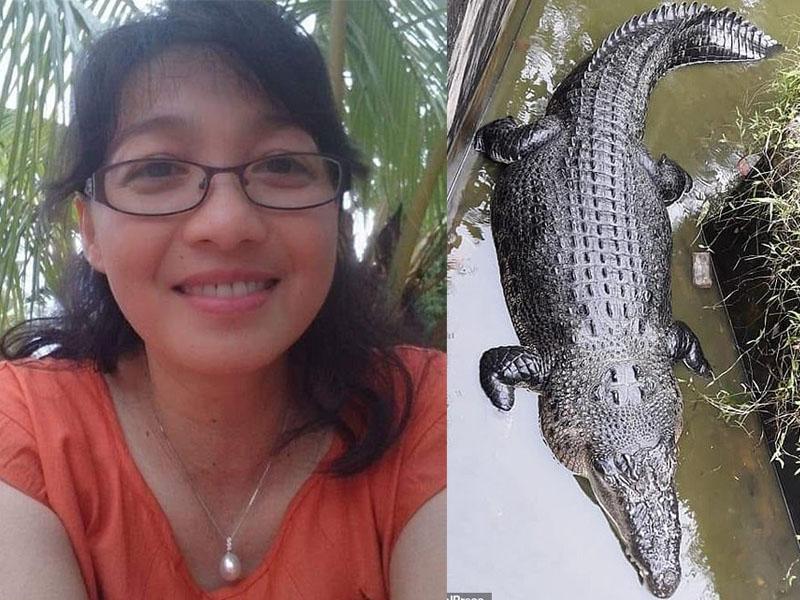 女科学家餵食鳄鱼时,惨遭5米长的鳄鱼咬掉半边身子!(网图)