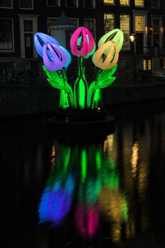 来自匈牙利的巨型郁金香灯光艺术装置。旅发局提供