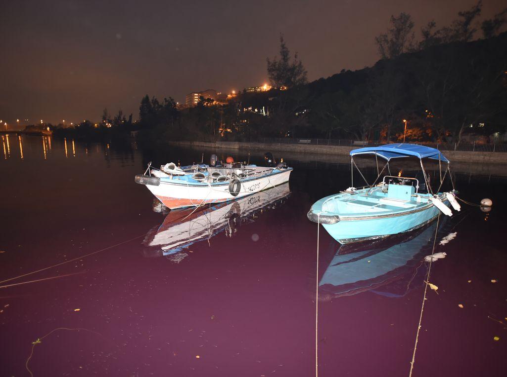 附近河道亦被染成一片紅色。