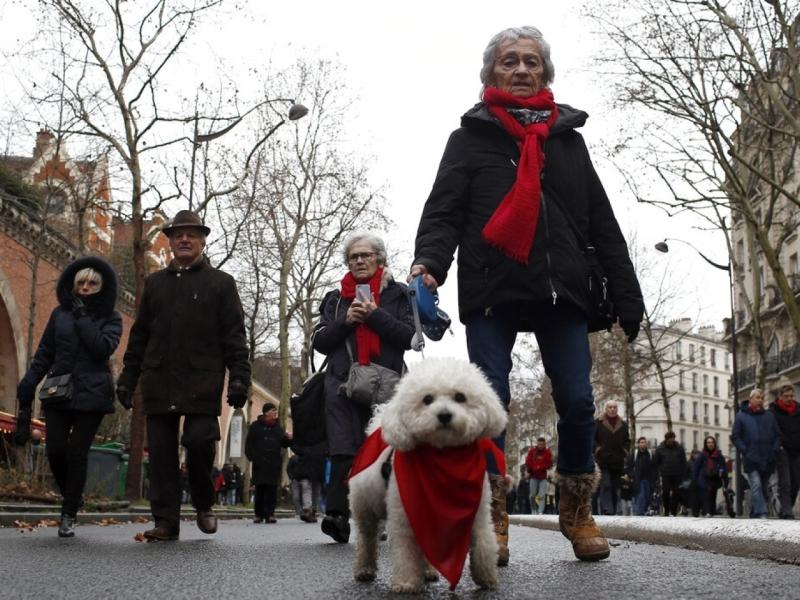 「紅頸巾」遊行人士,批評「黃背心」反政府活動導致社會混亂,要求停止暴力行為。AP