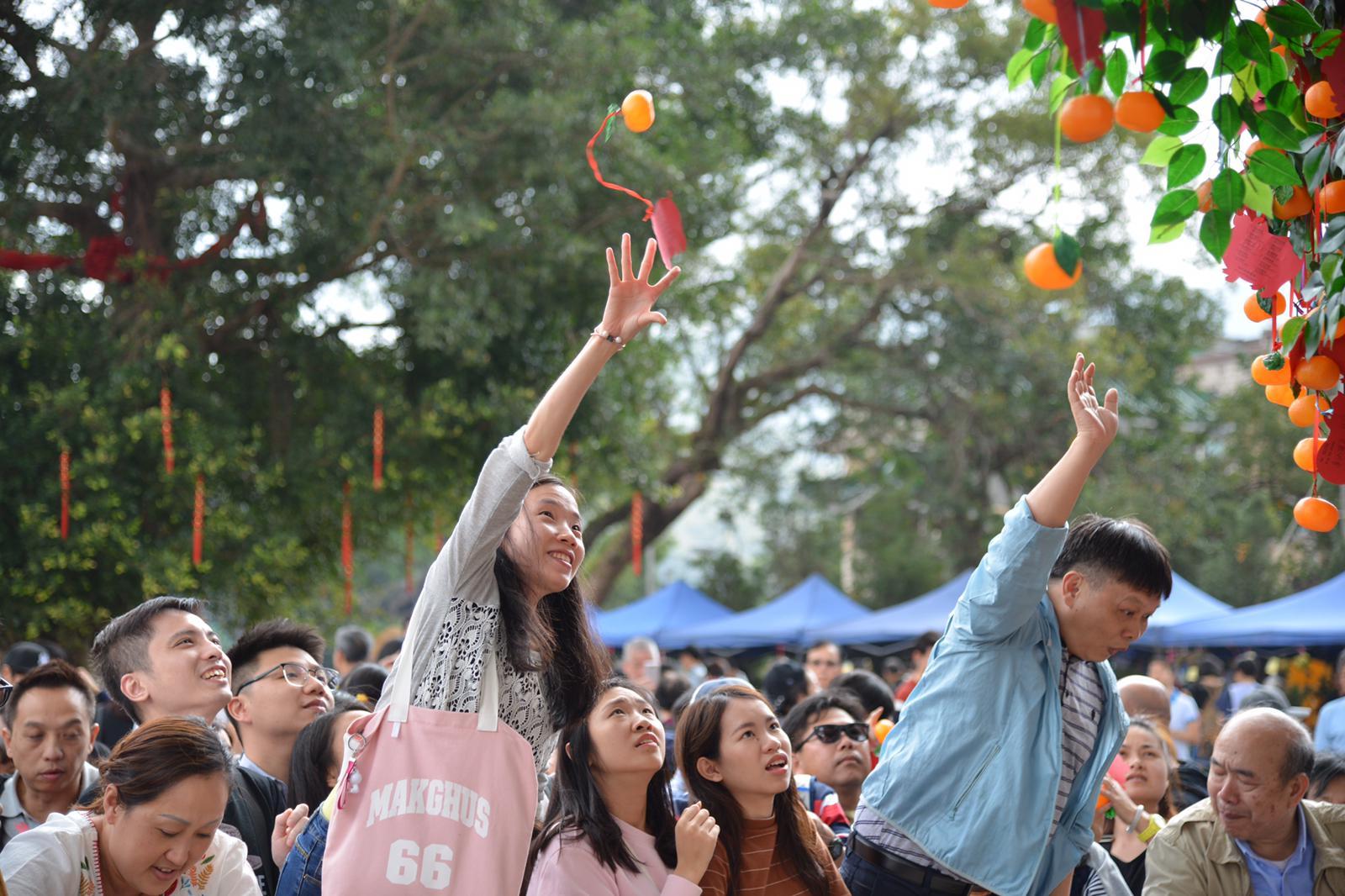 林村許願樹今日繼續開放,市民繼續到場拋祈福寶牒許下各式新年願望。