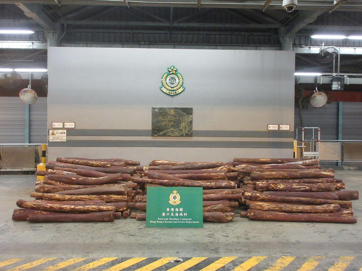 海關檢獲約1萬4300公斤懷疑紫檀木材,估計市值約850萬元。政府新聞處圖片
