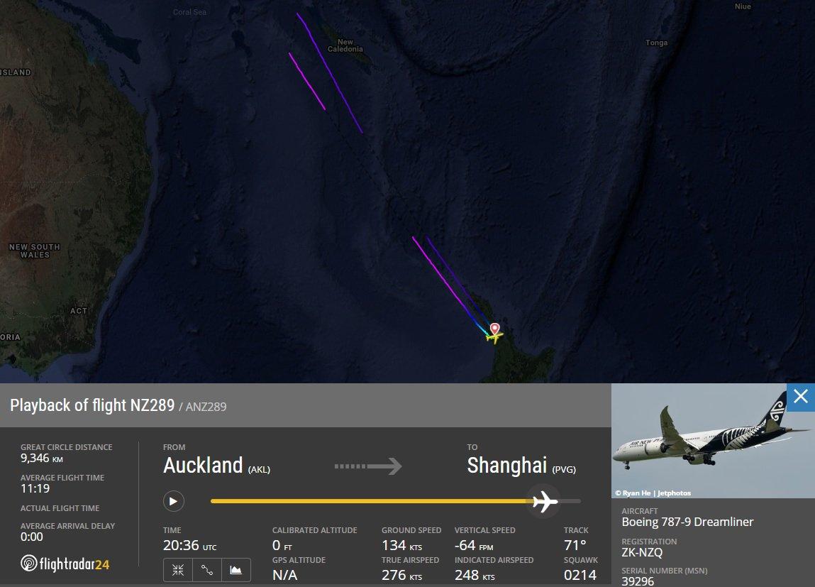 客机中途折返纽西兰。网上图片