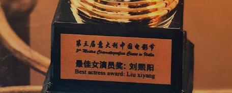 刘熙阳微博上贴出在意大利的获奖的奖杯。微博图片