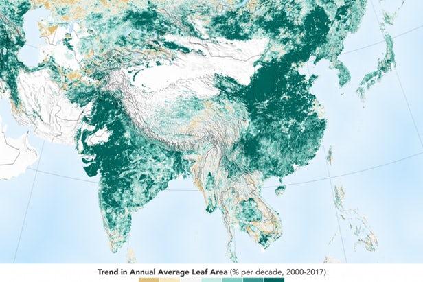 研究指地球變得更加「綠色」,最大的貢獻者是中國和印度。