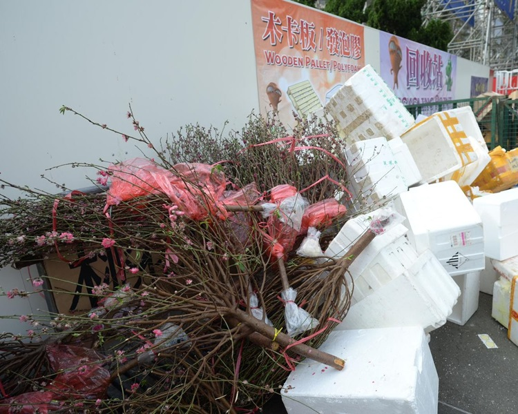 環保署呼籲市民將擬棄置的桃花運送到43個指定回收點,支持減廢。資料圖片