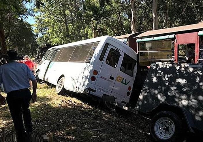 當時巴士上有17名游客,事故導致一名乘客胸部嚴重受創。網圖