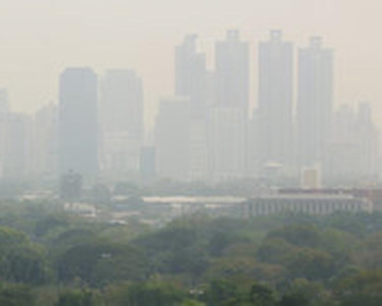泰国清迈受近日雾霾笼罩。图片
