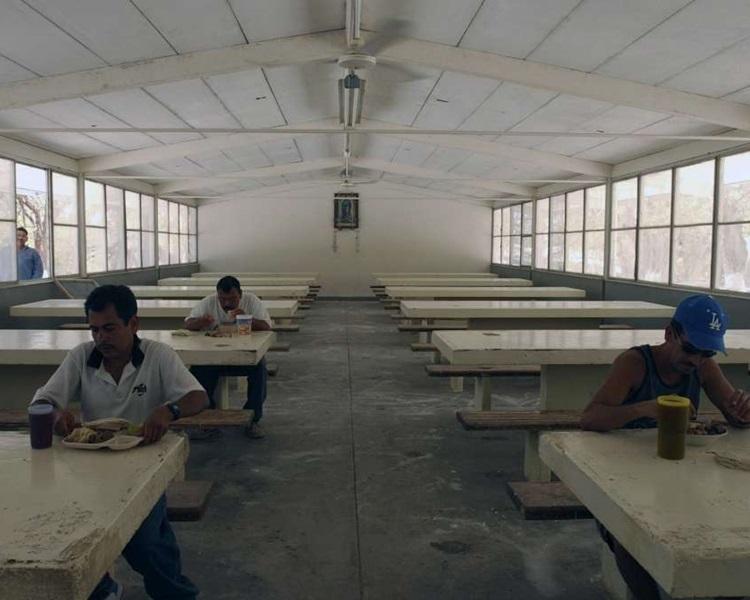 囚犯在島上的生活。AP