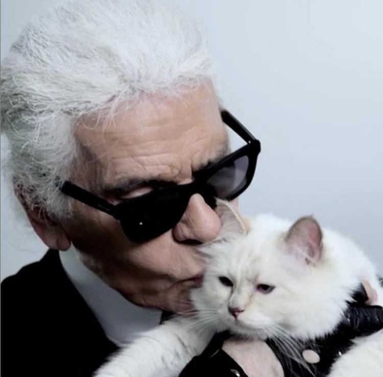 老佛爷与其爱猫Choupette。Choupette IG