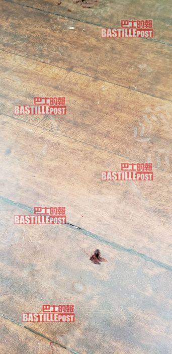 地板上留有彈孔。巴士的報圖片