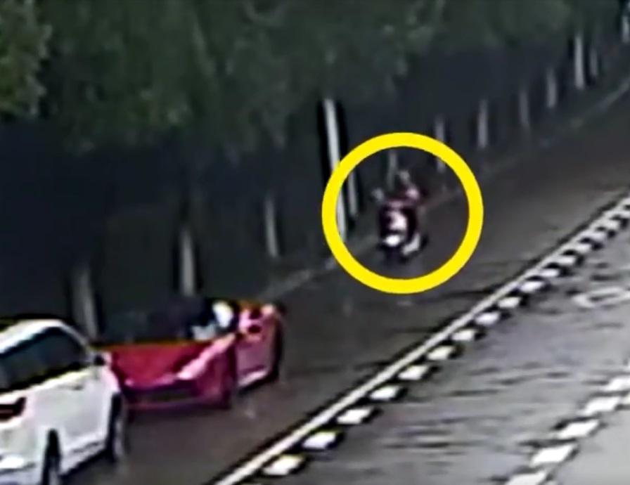 浙江女大生踩单车望手机。网上图片