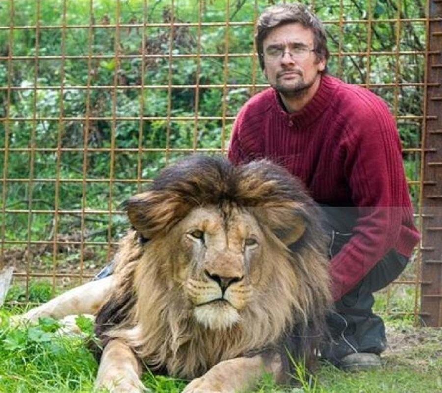 捷克男子遭自己养的狮子咬死 。网上图片