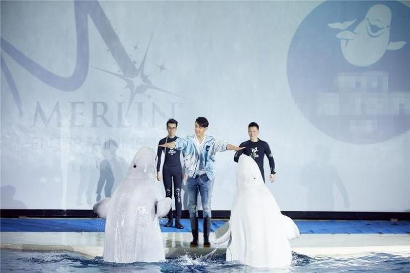 作為默林中國首位「海洋守護大使」,吳尊積極呼籲各界給予海洋和海洋生物更多關愛。(網圖)