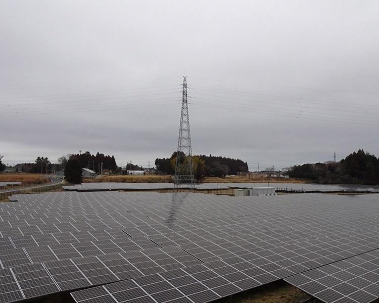 福岛县有农田改建太阳能板电田。网图