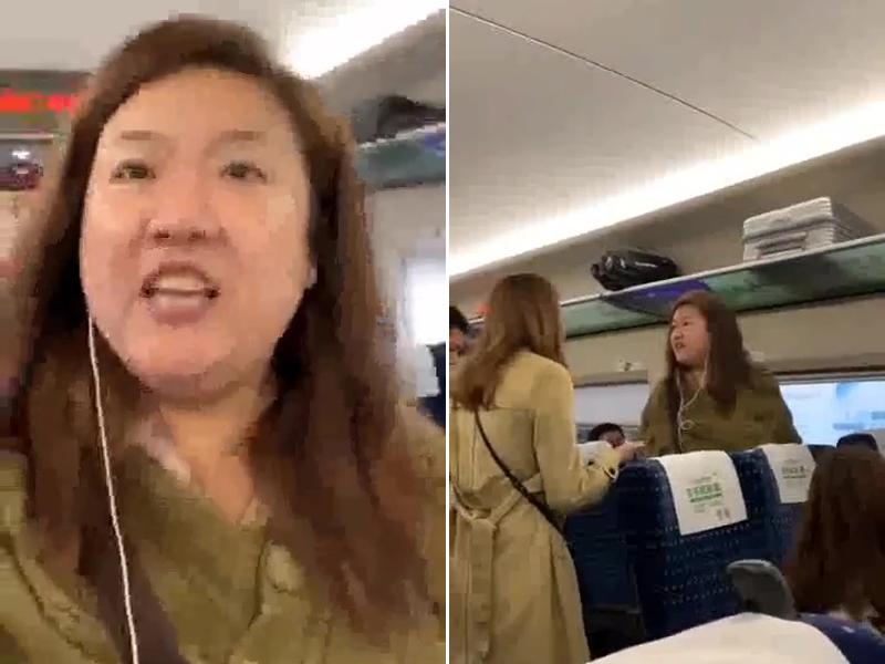 东北泼妈阻路不让反辱骂邻座女乘客,其后更大骂其他乘客,掀起车厢骂战。