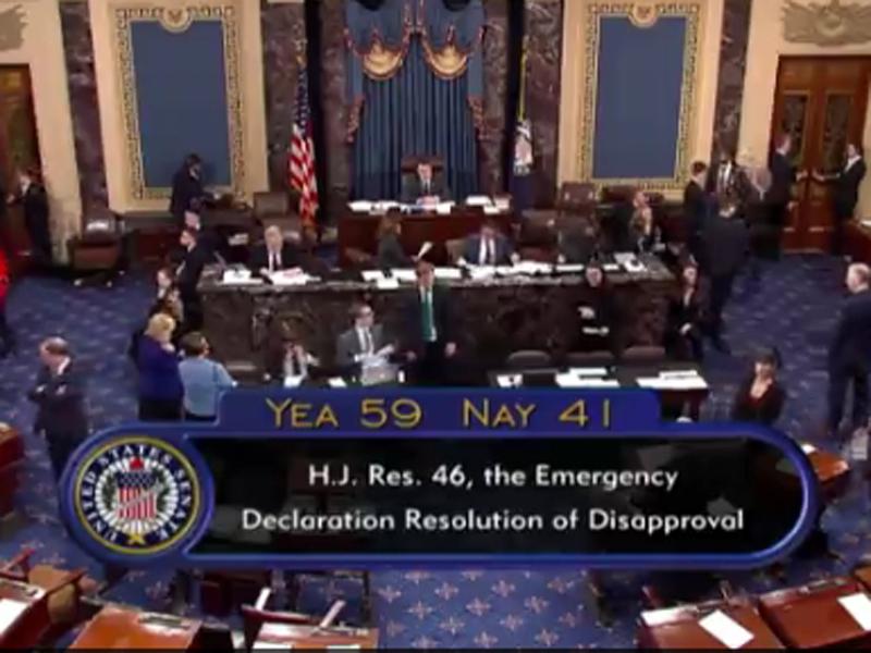 由美國共和黨控制的參議院以59票對41票,通過終止總統特朗普上月頒布在墨西哥邊境實施國家緊急狀態。(網圖)