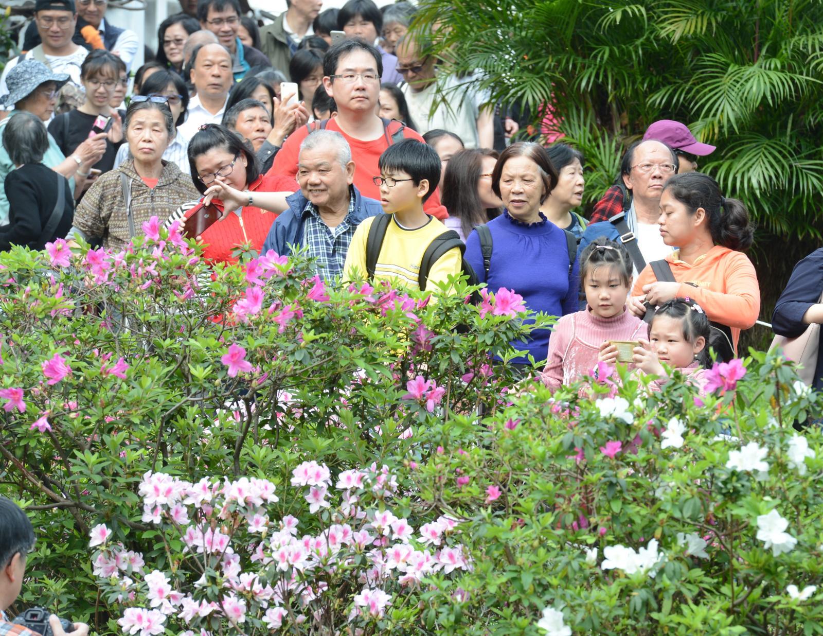 市民在禮賓府內賞花。