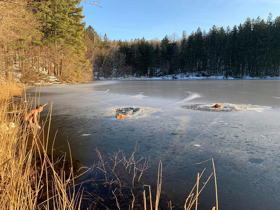 美国纽约一名子为拯救两只被困冰湖中的小狗,冒寒跳进湖里拯救。 FB图片