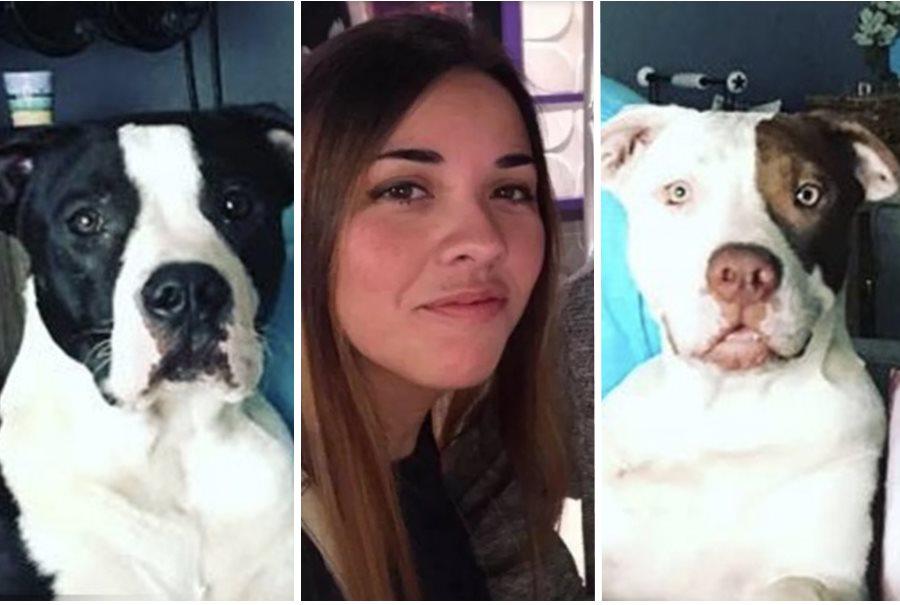 美国德州一名33岁女子到兽医院探望其两只比特犬时,竟遭爱犬们咬死。 Facebook图片