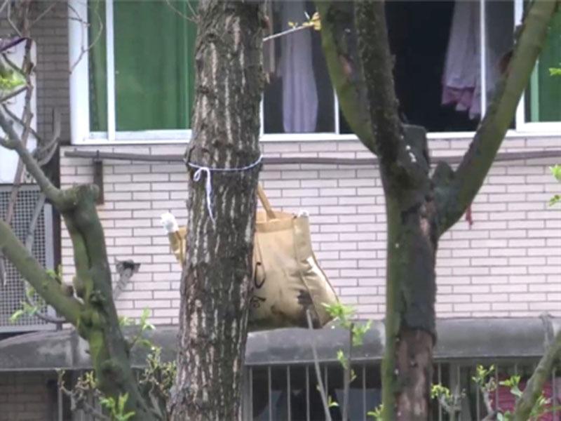 重慶一個公園經常傳出惡臭味,臭味來自樹上掛著的一個袋子,及後發現原來內藏貓屍。(網圖)